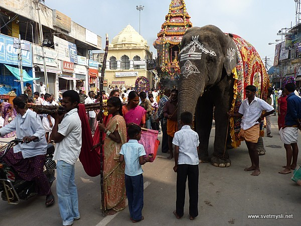 Temple elefant in city streets